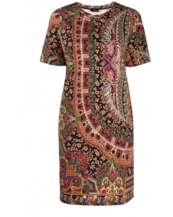ETRO - S.CRUZ Patterned Dress - Multicolor
