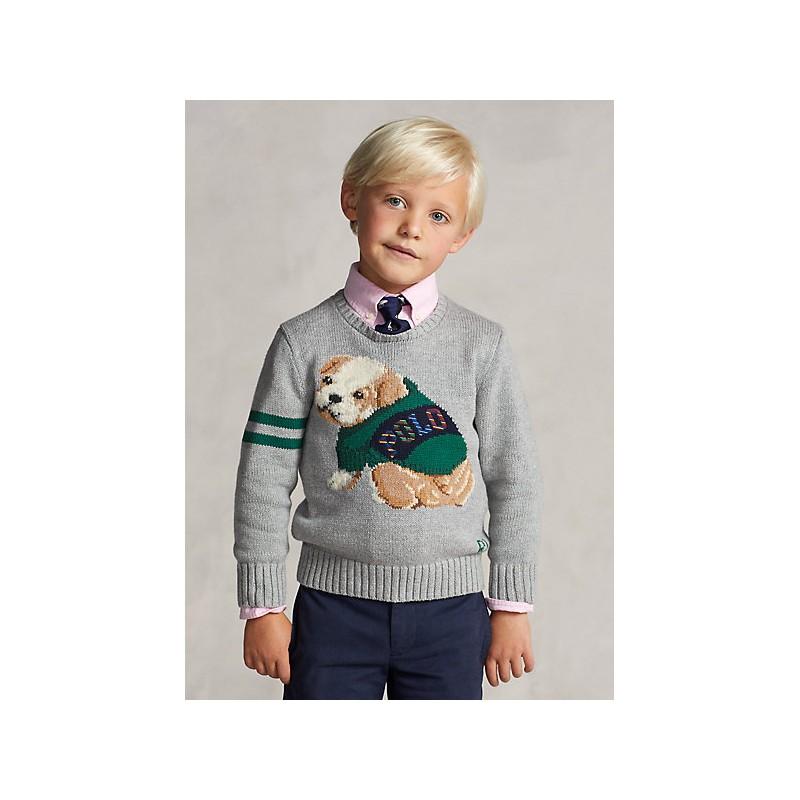 POLO RALPH LAUREN - Maglia in cotone e lana con bulldog 321/322851001 - Grigio