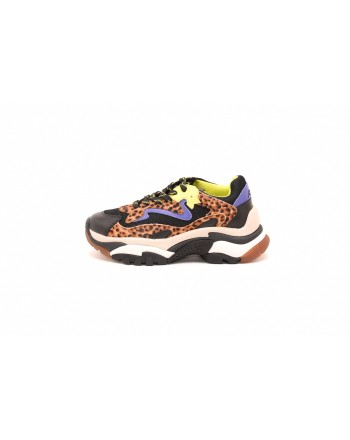 ASH - Sneakers ADDICT in pelle stampa LEOPARDO - Nero/Leopardo