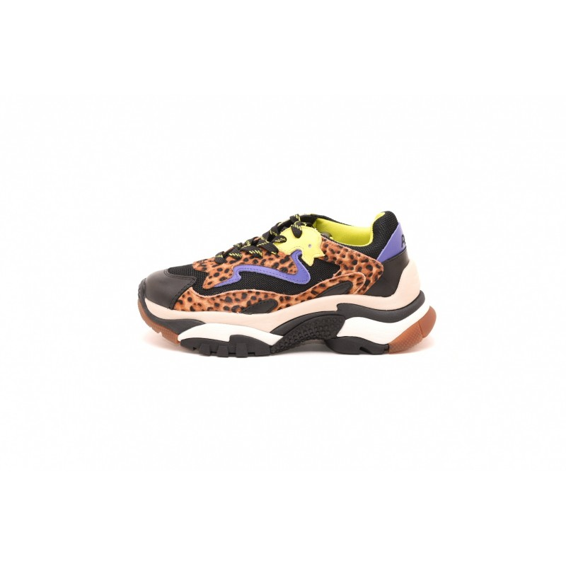 ASH - ADDICT Sneakers in Leopard printed leather - Black/Leopard